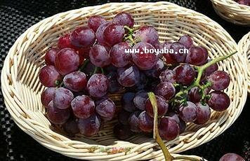 大金葡萄|黄冈特产