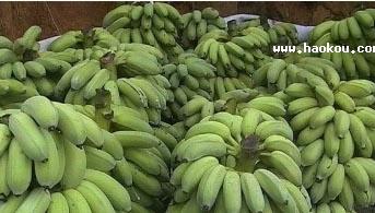 荷塘帝心欢香蕉