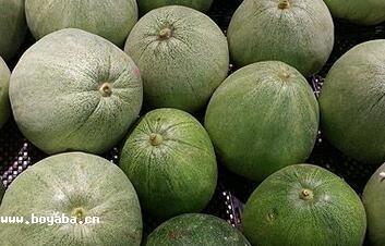 日本洋香瓜|宜昌特产