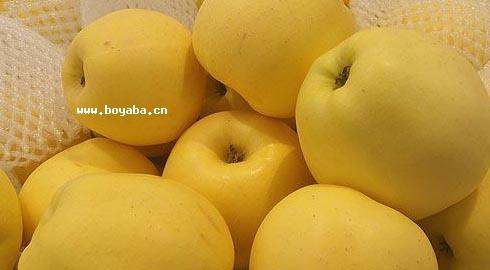 丹巴苹果|甘孜特产